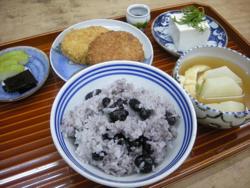 hirugohan_katsu_a.jpg