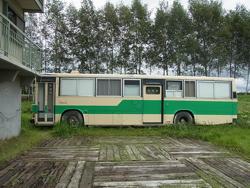 mika_bus.jpg